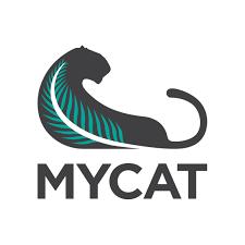 01-mycat.png