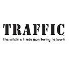 partner - traffic